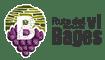 Ruta del vi de la DO del Pla de Bages Logo
